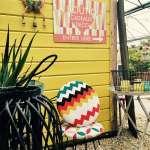 Venez chercher dans la boutique de notre jardinerie de Saint-Chinian