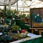 À Saint-Chinian, notre jardinerie vous accueille pour des animations et des ateliers de jardinage