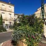 jardinerie de Saint-Chinian au service des communes, des particuliers et des collectivités